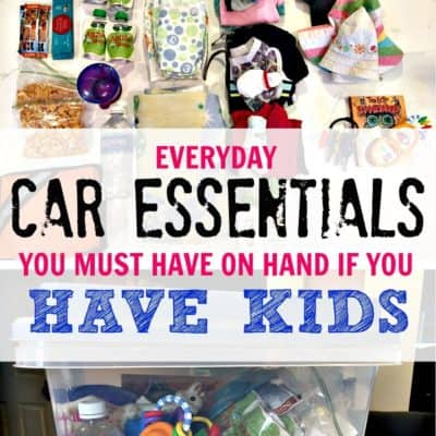 Car Essential Bin for Parents