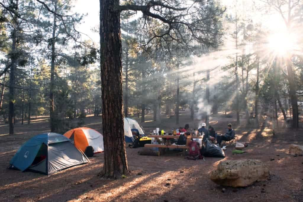 Prepare for Camping; Have an Organized and Safe Campsite and Must-Know Genius Camping Tips
