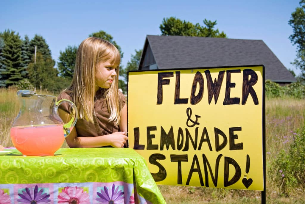 Lemonade Stand or Lemonade and flower stand.