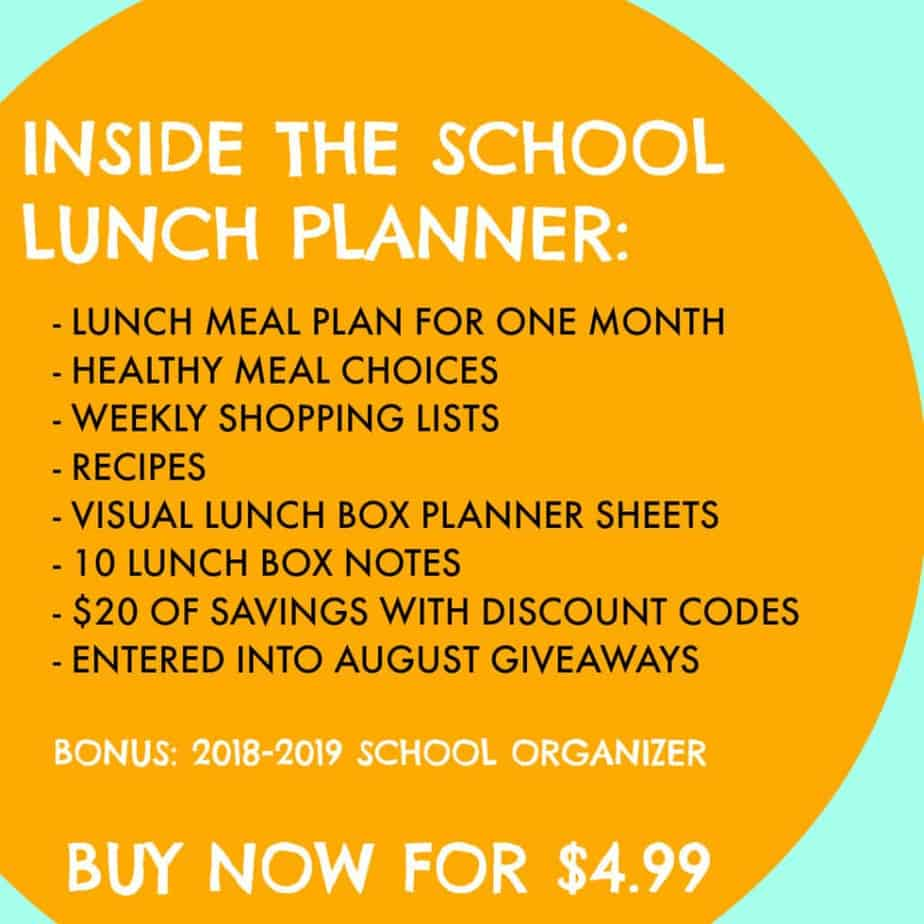 School Lunch Planner to Help you Plan Healthy Kid's Lunches for School
