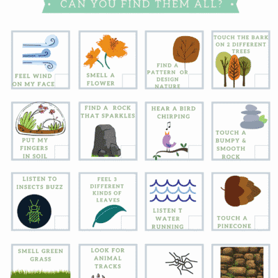 Sensory Nature Scavenger Hunt PDF Printable
