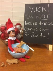 dog treats for santa and elf on the shelf