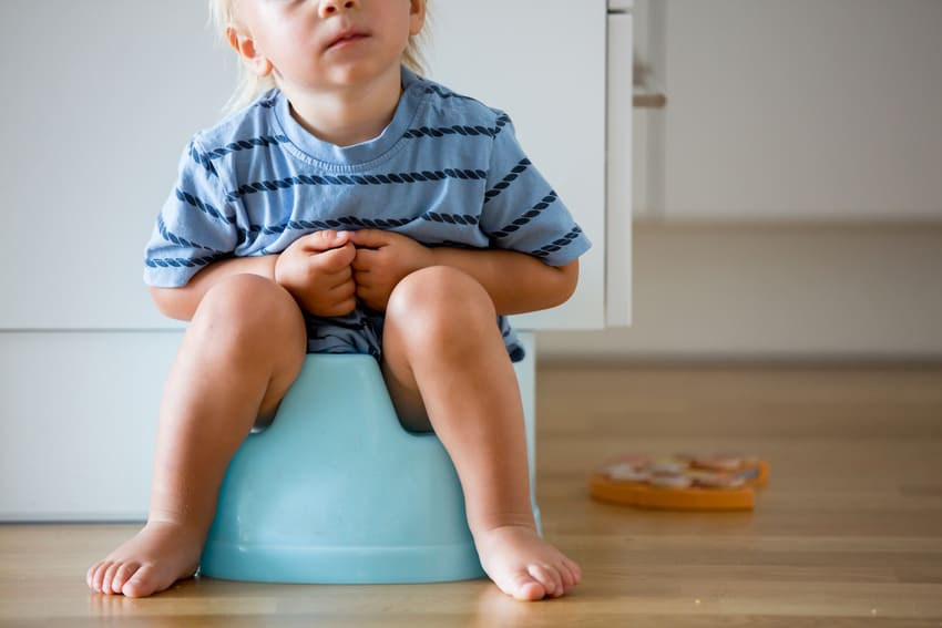 The Ultimate Guide For Potty Training